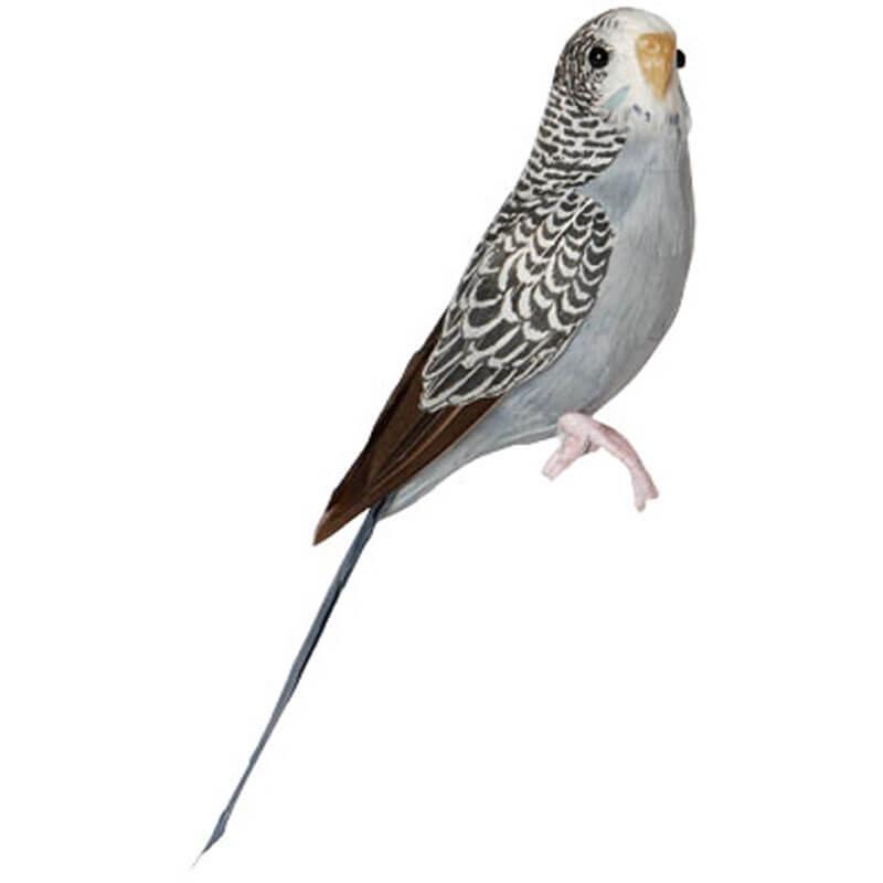 Puebdo-Dekorationsfugl-undulat