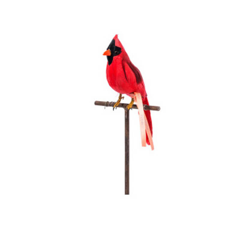 Puebco-Red-Cardinal-Bird