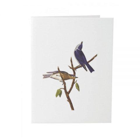 TokyoMilk-Blue-Bird
