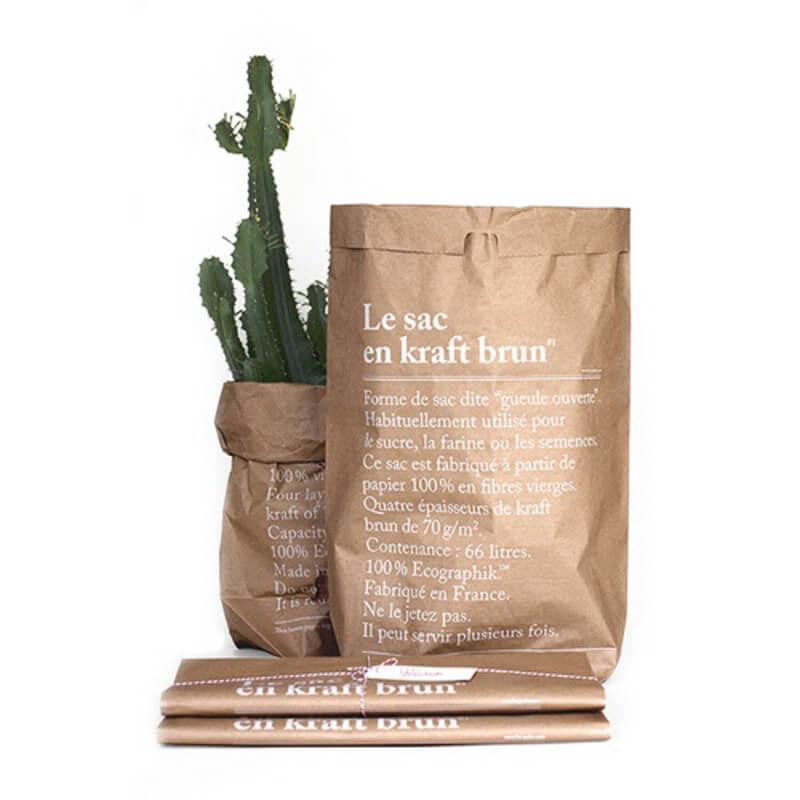 Le-sac-papier-brun